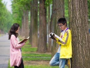 Englisch Nachhilfe in Bevern, Kreis Holzminden